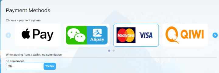 Payment methods on SMS-MAN.com